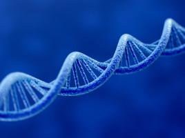 3D printing-DNA